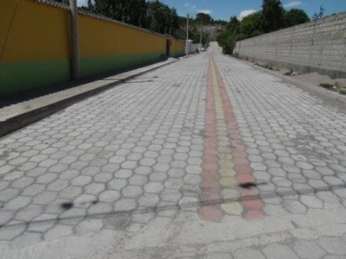 C:\Users\CONTABILIDAD\Documents\ZAMY\Fotos actividaes GADPG\Adoquinado Barrio Doña Ana\DSC01518.JPG